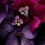 Isabelle Bonjean Chopard Orchidees 2